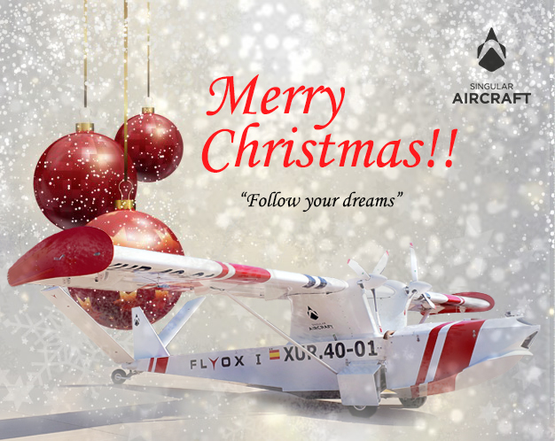 Merry Christmas Singular Aircraft 2017
